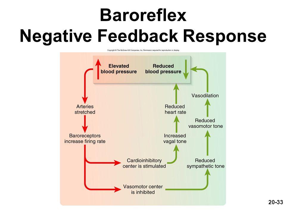 20-33 Baroreflex Negative Feedback Response