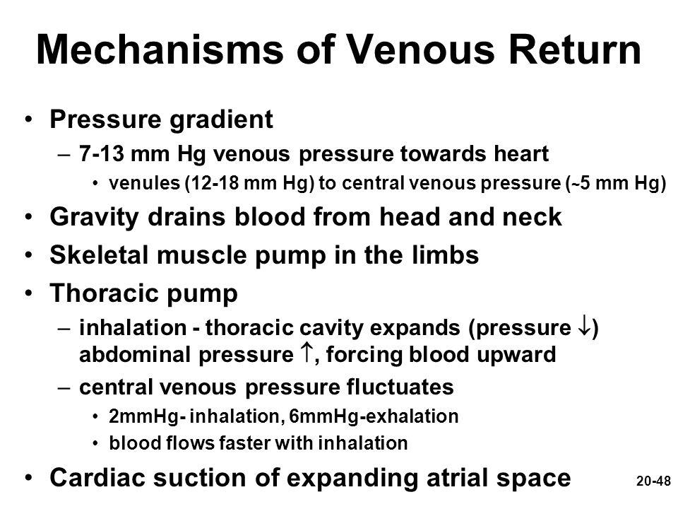 20-48 Mechanisms of Venous Return Pressure gradient –7-13 mm Hg venous pressure towards heart venules (12-18 mm Hg) to central venous pressure ( ~ 5 m