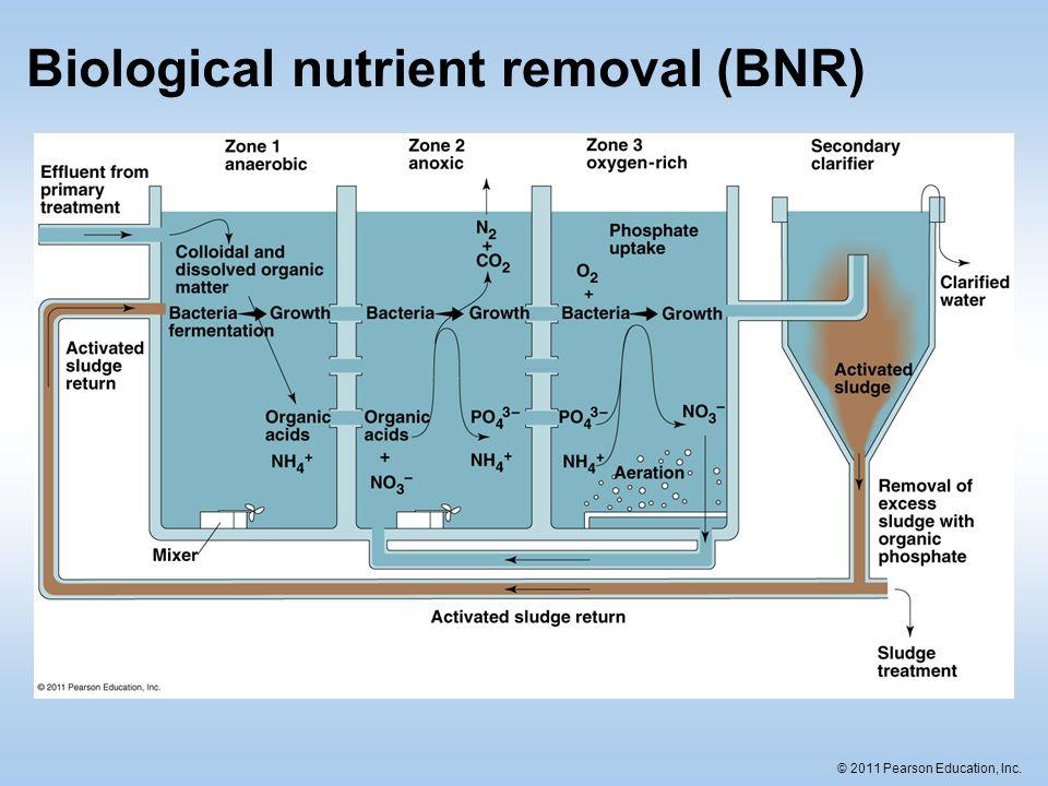 © 2011 Pearson Education, Inc. Biological nutrient removal (BNR)