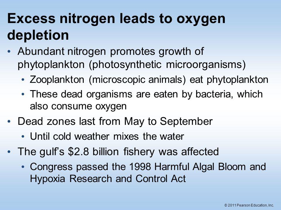 © 2011 Pearson Education, Inc. Excess nitrogen leads to oxygen depletion Abundant nitrogen promotes growth of phytoplankton (photosynthetic microorgan