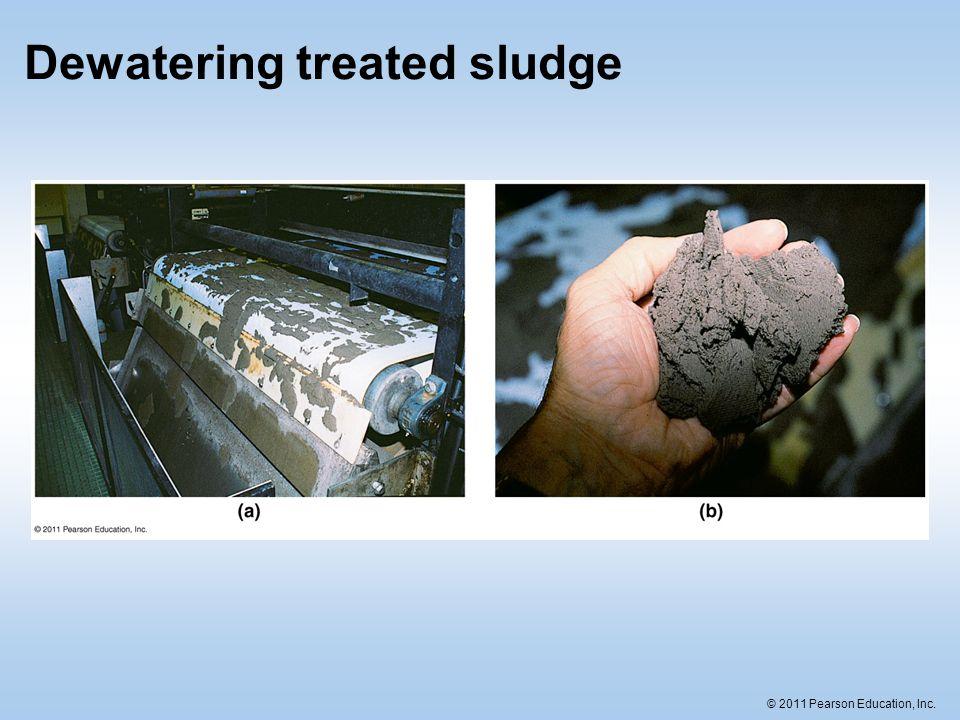 © 2011 Pearson Education, Inc. Dewatering treated sludge