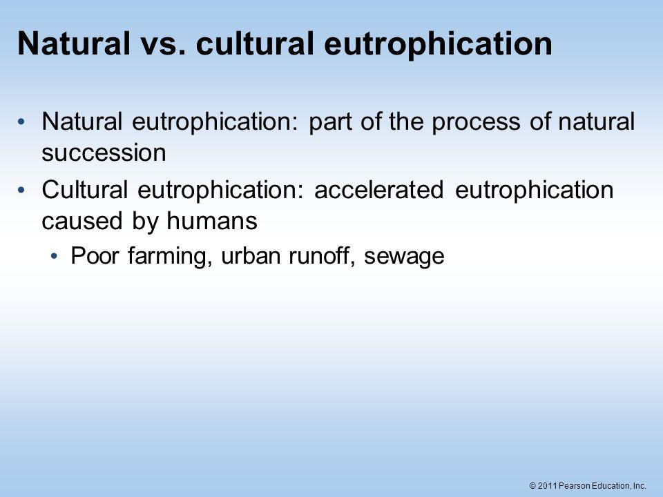 © 2011 Pearson Education, Inc. Natural vs. cultural eutrophication Natural eutrophication: part of the process of natural succession Cultural eutrophi