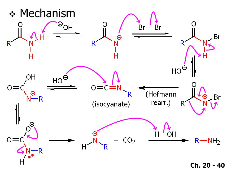 Ch. 20 - 40  Mechanism