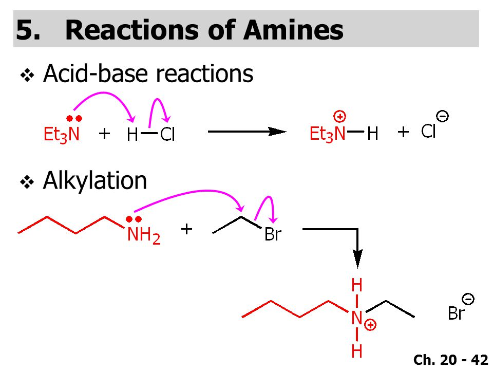 Ch. 20 - 42 5.Reactions of Amines  Acid-base reactions  Alkylation