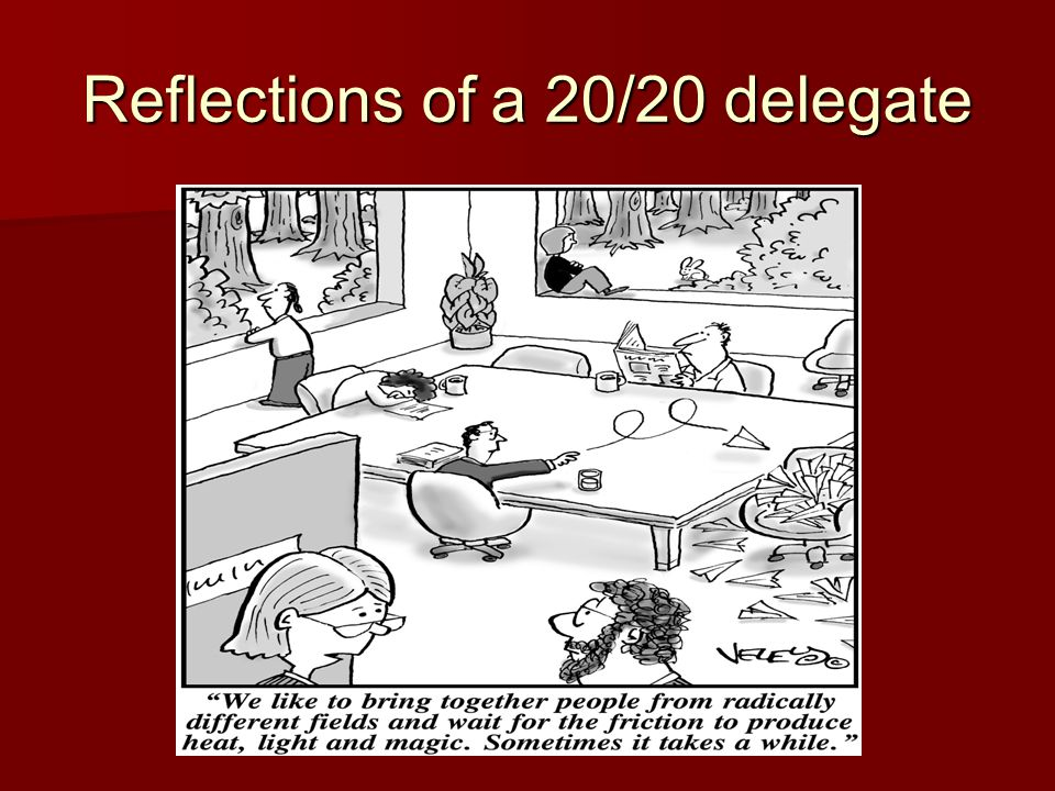 Reflections of a 20/20 delegate