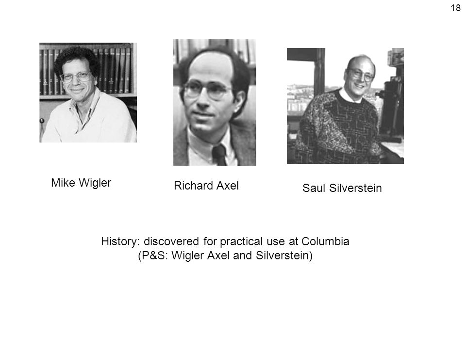 18 Mike Wigler Richard Axel Saul Silverstein History: discovered for practical use at Columbia (P&S: Wigler Axel and Silverstein)