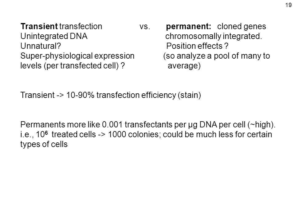 19 Transient transfection vs. permanent: cloned genes Unintegrated DNA chromosomally integrated. Unnatural? Position effects ? Super-physiological exp