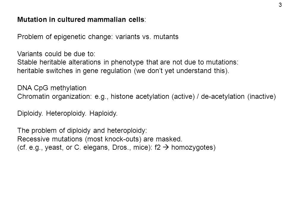 3 Mutation in cultured mammalian cells: Problem of epigenetic change: variants vs.