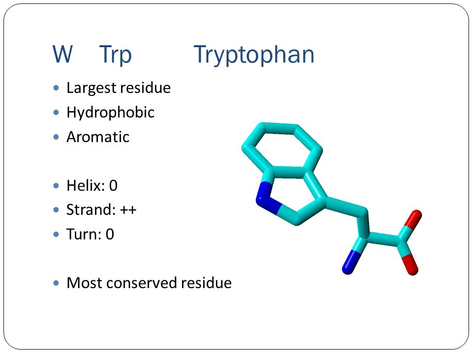 WTrpTryptophan Largest residue Hydrophobic Aromatic Helix: 0 Strand: ++ Turn: 0 Most conserved residue
