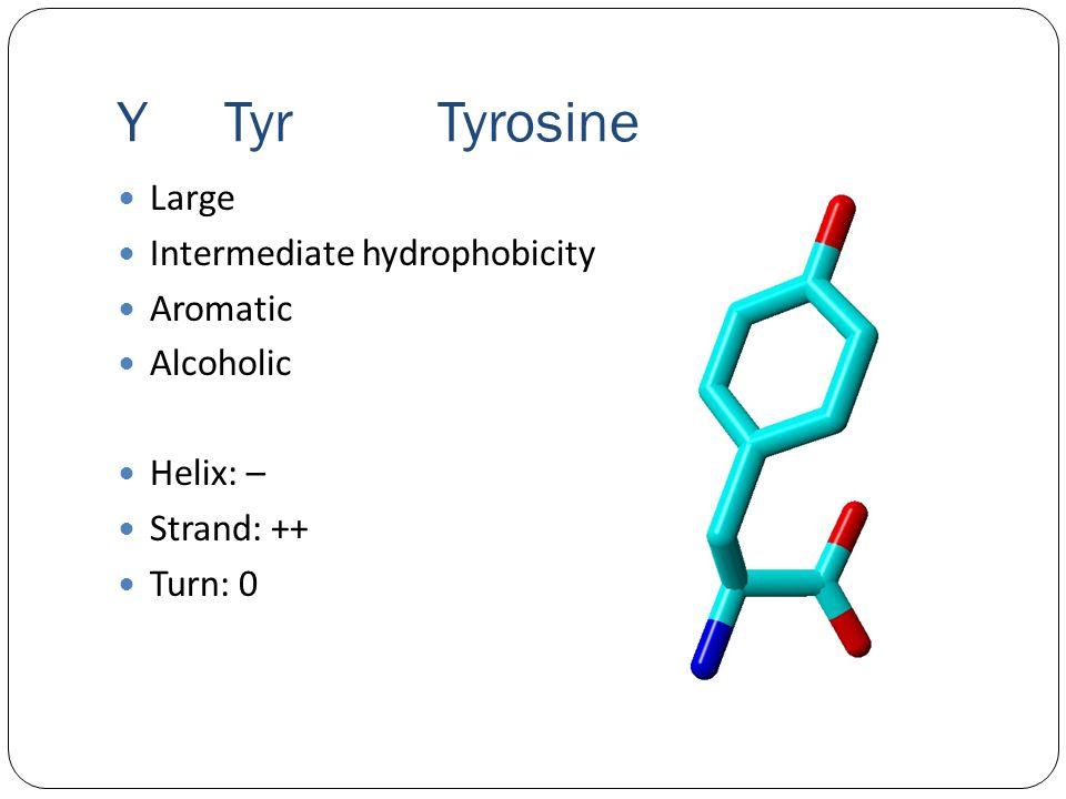 YTyrTyrosine Large Intermediate hydrophobicity Aromatic Alcoholic Helix: – Strand: ++ Turn: 0