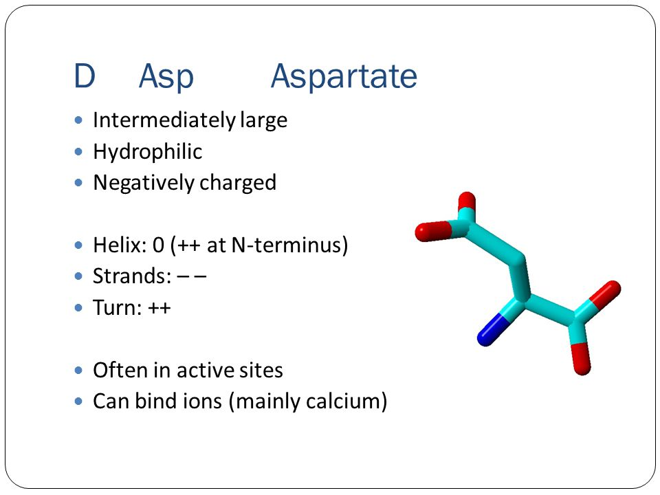 DAspAspartate Intermediately large Hydrophilic Negatively charged Helix: 0 (++ at N-terminus) Strands: – – Turn: ++ Often in active sites Can bind ions (mainly calcium)