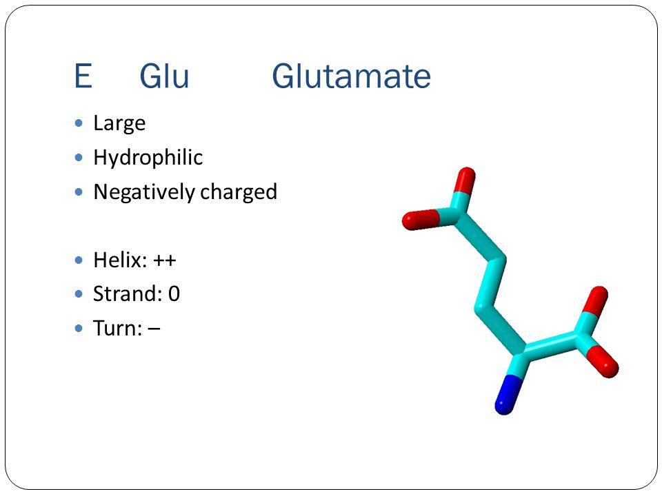 EGluGlutamate Large Hydrophilic Negatively charged Helix: ++ Strand: 0 Turn: –