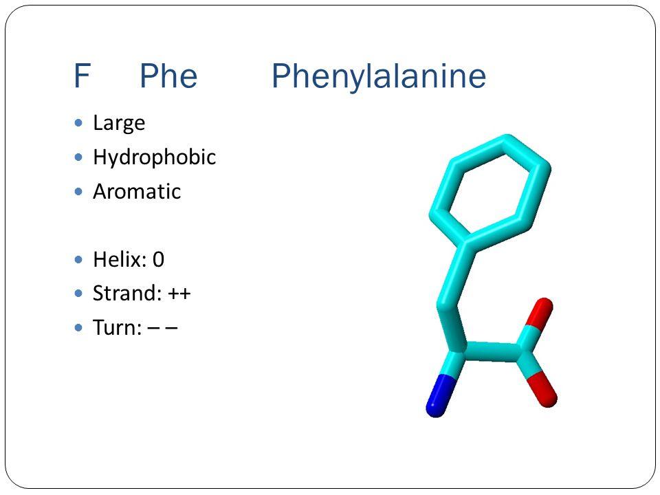 FPhe Phenylalanine Large Hydrophobic Aromatic Helix: 0 Strand: ++ Turn: – –