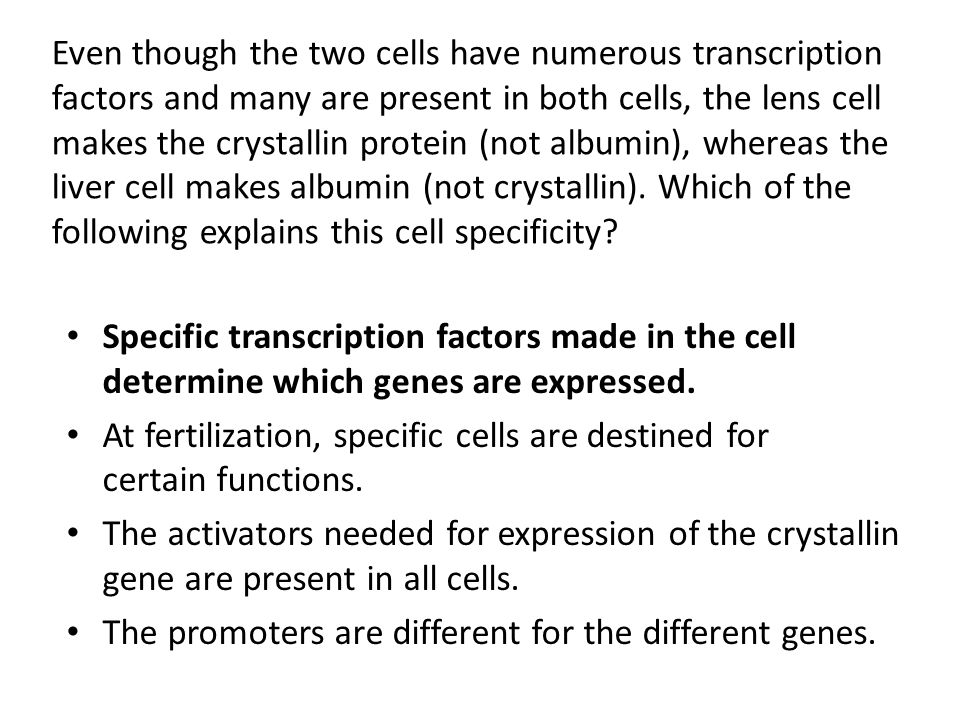 Even though the two cells have numerous transcription factors and many are present in both cells, the lens cell makes the crystallin protein (not albu