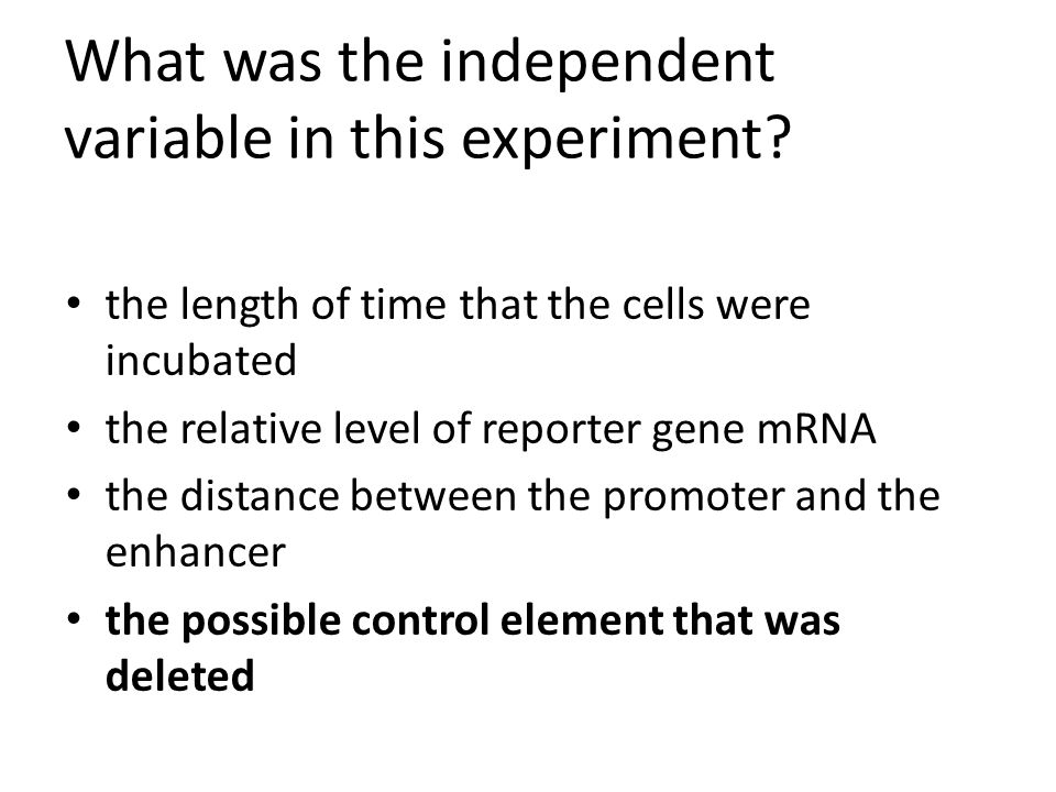 What was the independent variable in this experiment? the length of time that the cells were incubated the relative level of reporter gene mRNA the di
