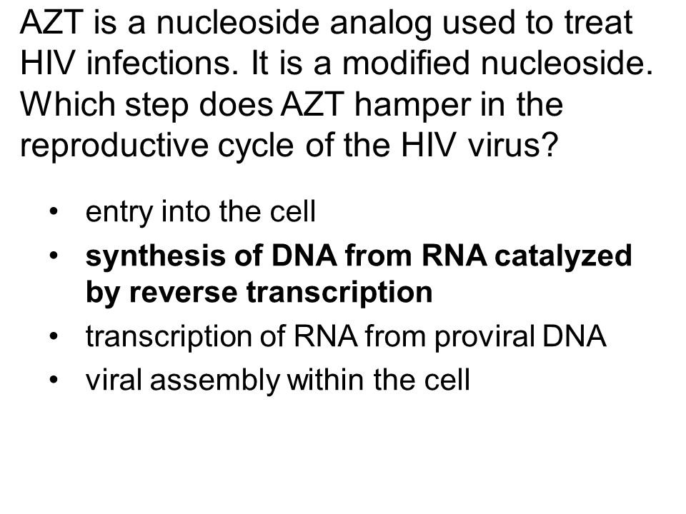 AZT is a nucleoside analog used to treat HIV infections. It is a modified nucleoside. Which step does AZT hamper in the reproductive cycle of the HIV