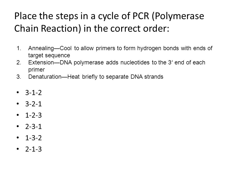 Place the steps in a cycle of PCR (Polymerase Chain Reaction) in the correct order: 3-1-2 3-2-1 1-2-3 2-3-1 1-3-2 2-1-3 1.Annealing—Cool to allow prim