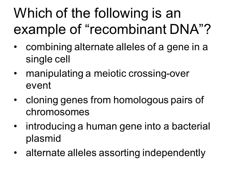 """Which of the following is an example of """"recombinant DNA""""? combining alternate alleles of a gene in a single cell manipulating a meiotic crossing-over"""