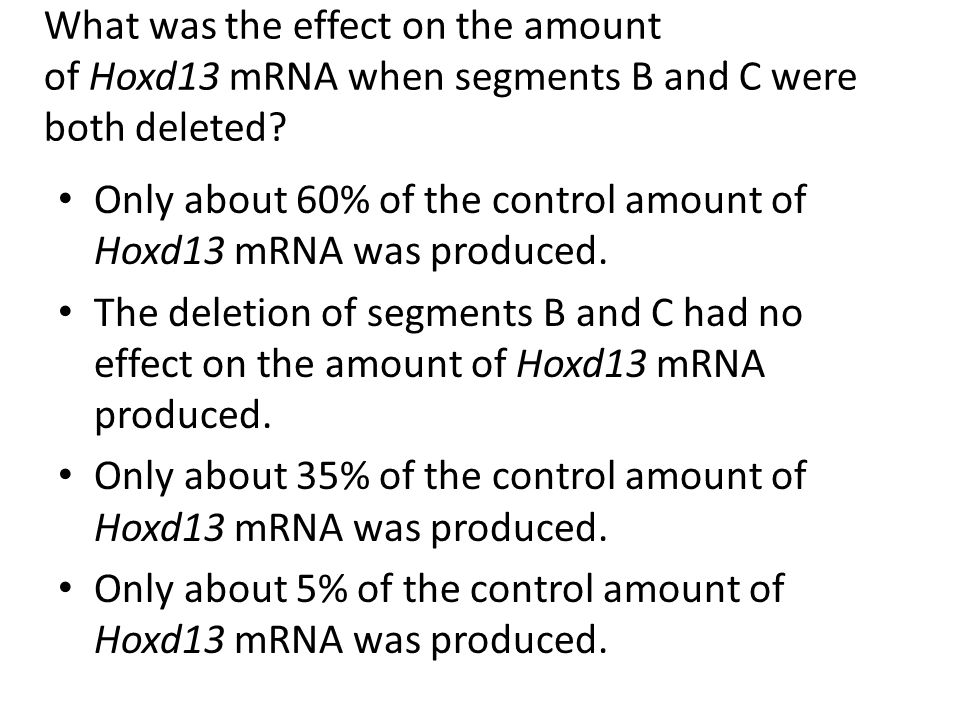 What was the effect on the amount of Hoxd13 mRNA when segments B and C were both deleted? Only about 60% of the control amount of Hoxd13 mRNA was prod