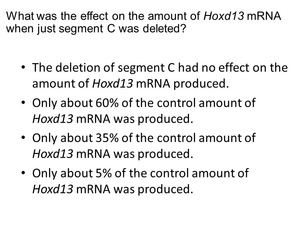 What was the effect on the amount of Hoxd13 mRNA when just segment C was deleted? The deletion of segment C had no effect on the amount of Hoxd13 mRNA