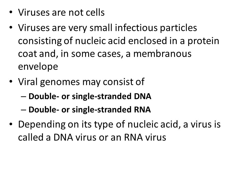 The HIV virus attacks only a certain type of white blood cells, and not other cell types.