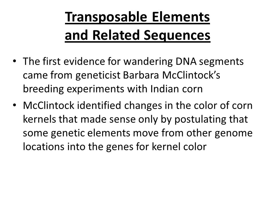 Transposable Elements and Related Sequences The first evidence for wandering DNA segments came from geneticist Barbara McClintock's breeding experimen