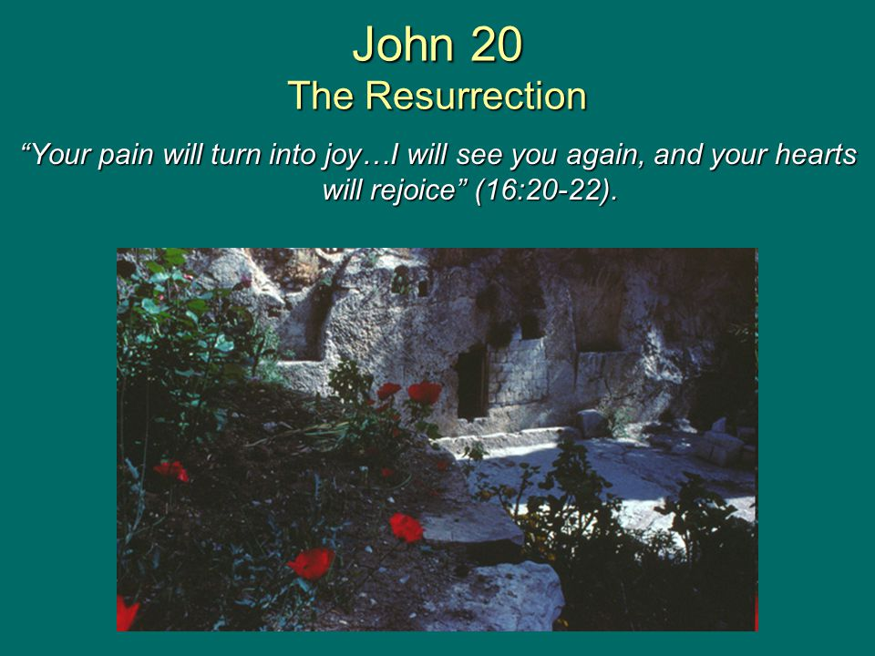 """John 20 The Resurrection """"Your pain will turn into joy…I will see you again, and your hearts will rejoice"""" (16:20-22)."""
