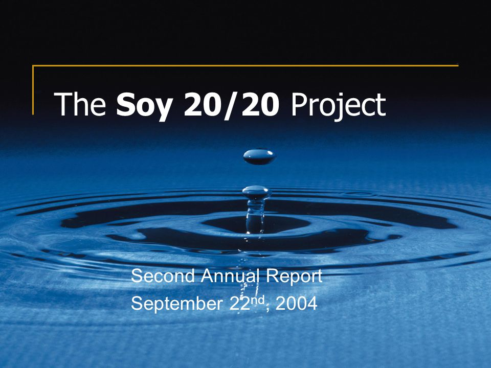 The Soy 20/20 Project Second Annual Report September 22 nd, 2004