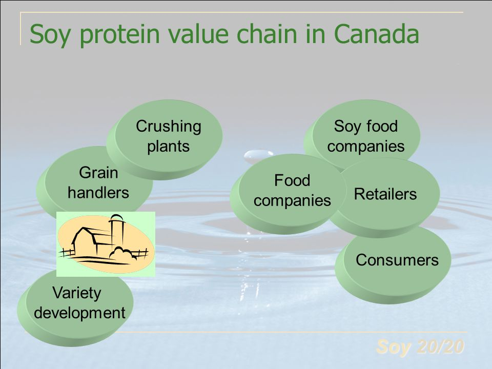 Soy 20/20 Soy protein value chain in Canada Variety development Grain handlers Crushing plants Soy food companies Consumers Retailers Food companies