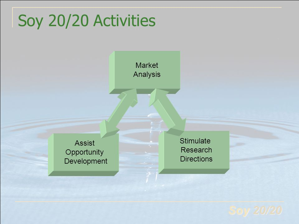 Soy 20/20 Soy 20/20 Activities Market Analysis Assist Opportunity Development Stimulate Research Directions