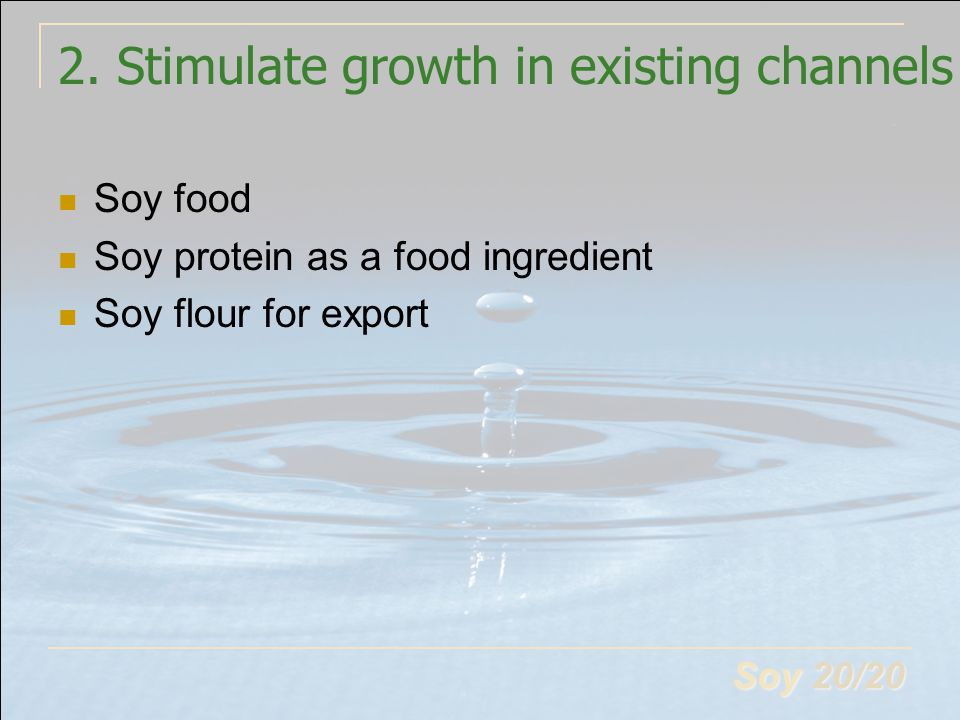 Soy 20/20 2. Stimulate growth in existing channels Soy food Soy protein as a food ingredient Soy flour for export