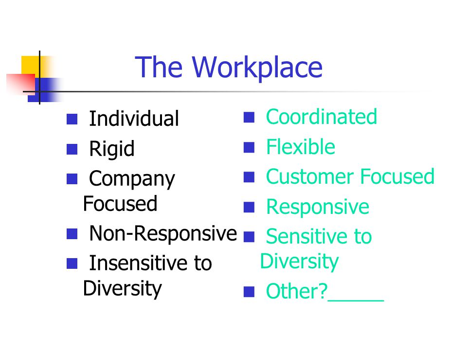 The Workplace Individual Rigid Company Focused Non-Responsive Insensitive to Diversity Coordinated Flexible Customer Focused Responsive Sensitive to Diversity Other?_____