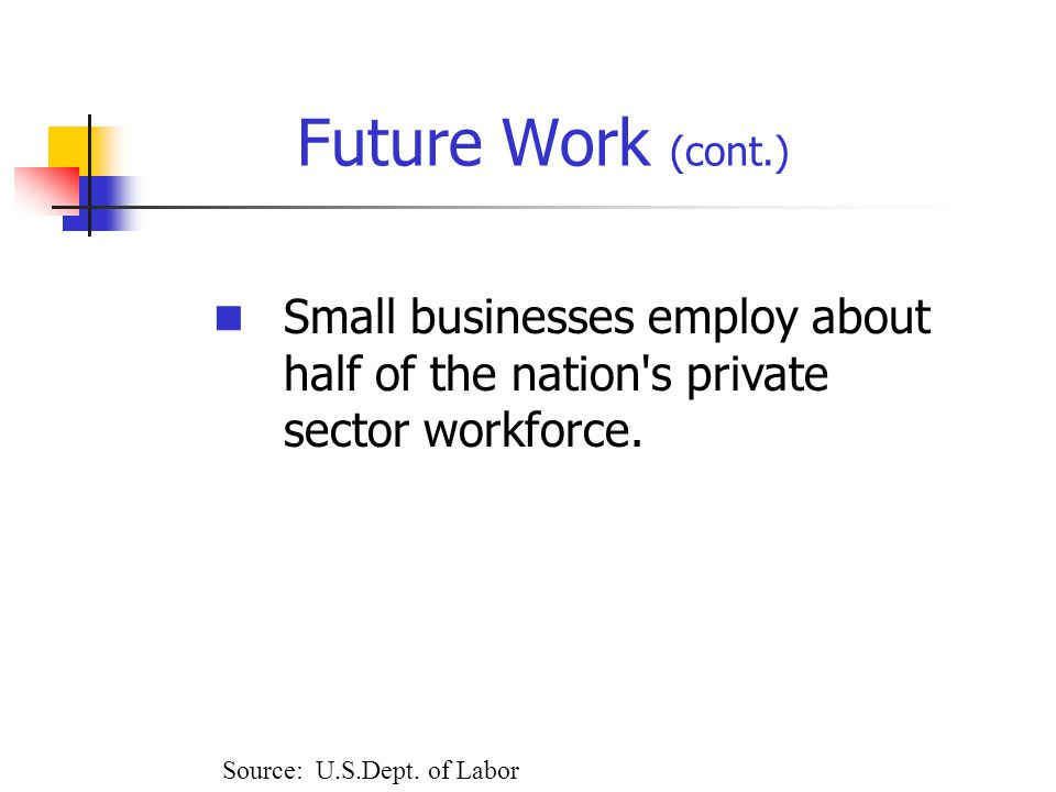 Future Work (cont.) Small businesses employ about half of the nation s private sector workforce.