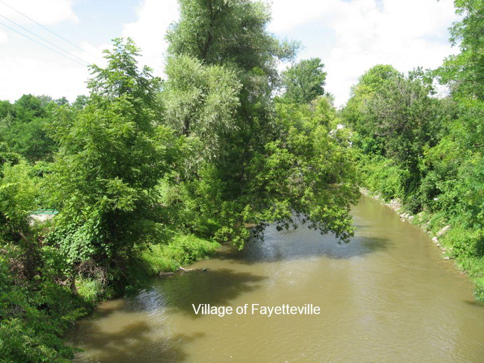 Village of Fayetteville