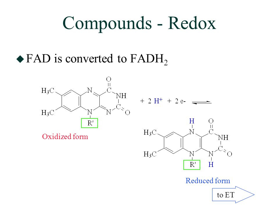 Compounds - Redox  FAD is converted to FADH 2 Oxidized form Reduced form to ET