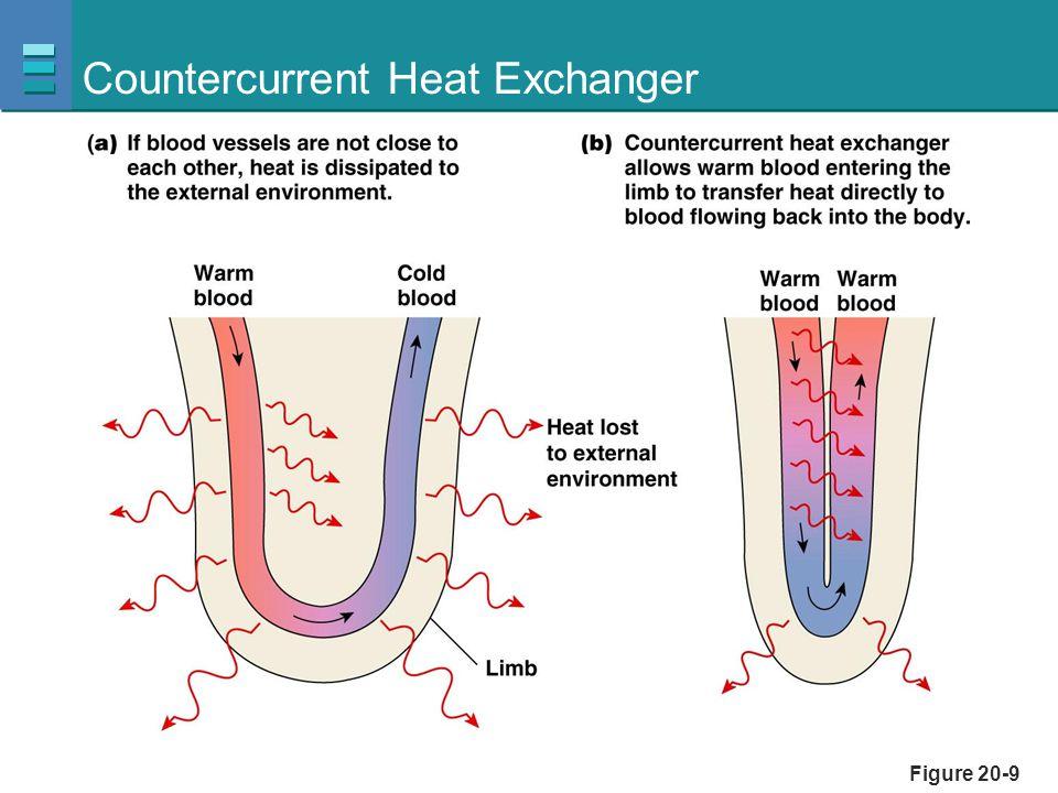 Figure 20-9 Countercurrent Heat Exchanger