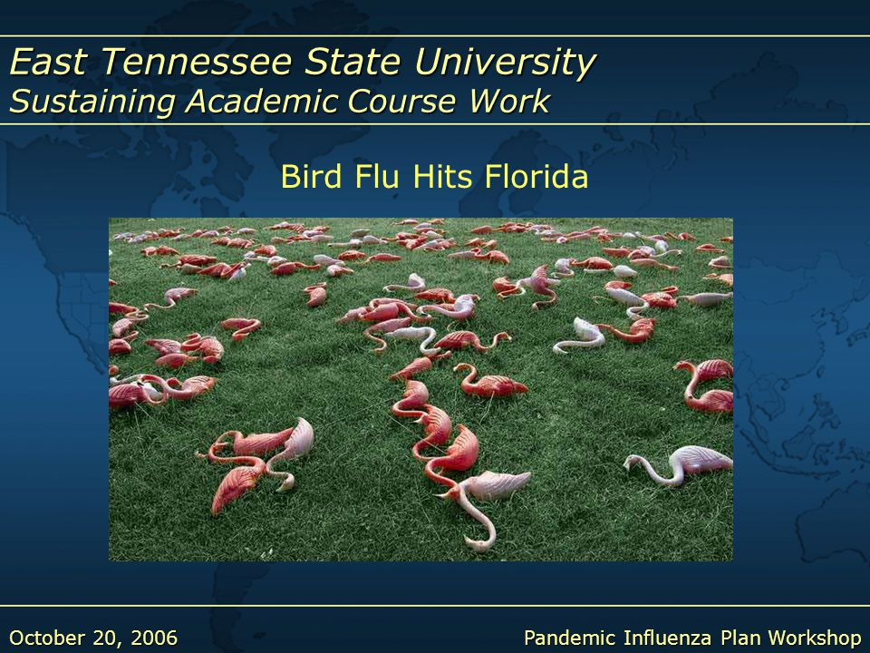 East Tennessee State University Sustaining Academic Course Work October 20, 2006Pandemic Influenza Plan Workshop Bird Flu Hits Florida