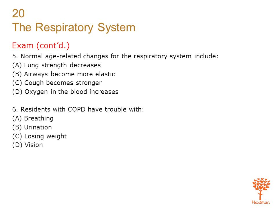 20 The Respiratory System Exam (cont'd.) 5. Normal age-related changes for the respiratory system include: (A) Lung strength decreases (B) Airways bec