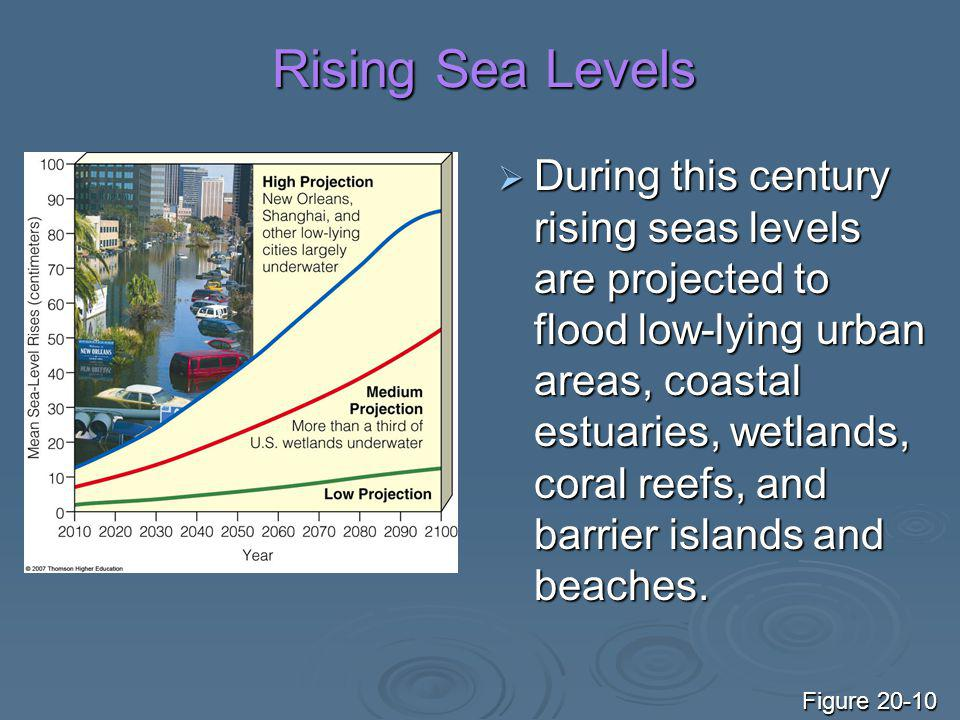 Rising Sea Levels  During this century rising seas levels are projected to flood low-lying urban areas, coastal estuaries, wetlands, coral reefs, and