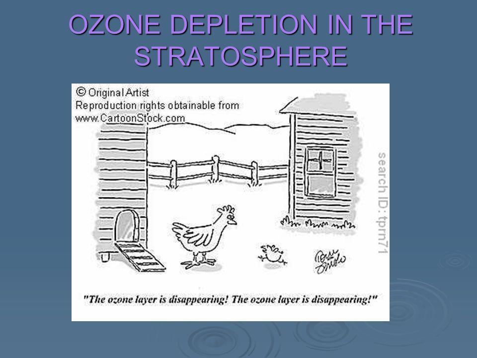 OZONE DEPLETION IN THE STRATOSPHERE