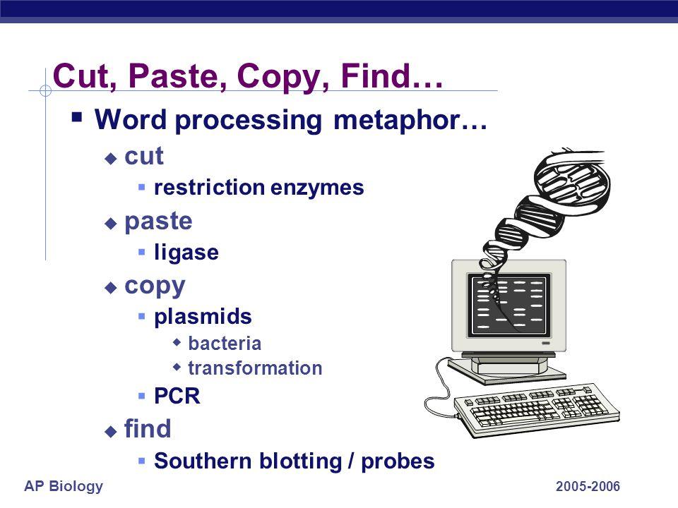 AP Biology 2005-2006 Bioengineering Tool kit  Basic Tools  restriction enzymes  ligase  plasmids / cloning  DNA libraries / probes  Advanced Too