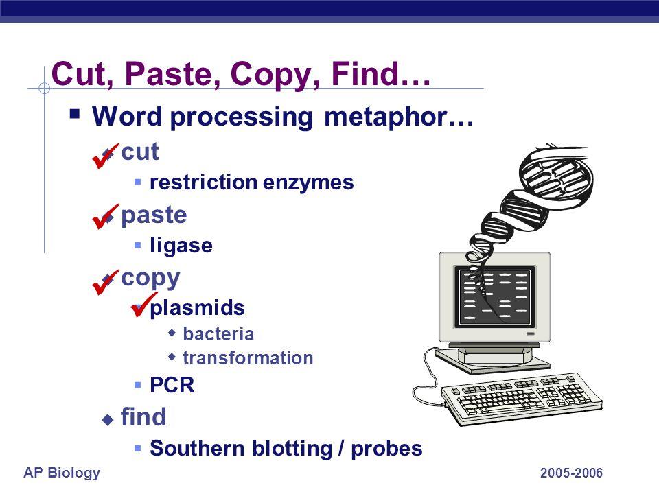 AP Biology 2005-2006 Gene cloning Recombinant DNA movie
