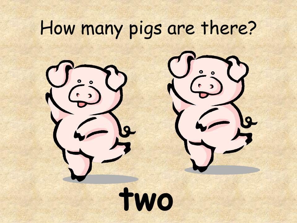 How many pigs are there? two