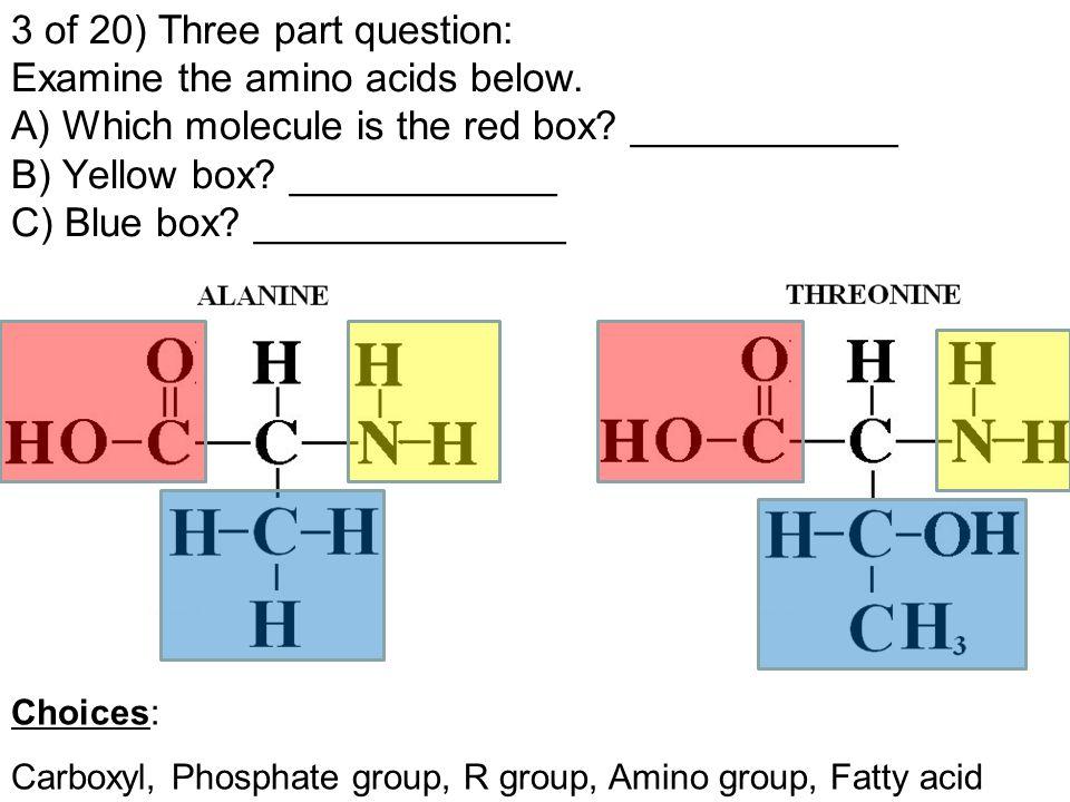 3 of 20) Three part question: Examine the amino acids below.