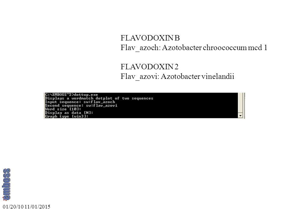 FLAVODOXIN B Flav_azoch: Azotobacter chroococcum mcd 1 FLAVODOXIN 2 Flav_azovi: Azotobacter vinelandii