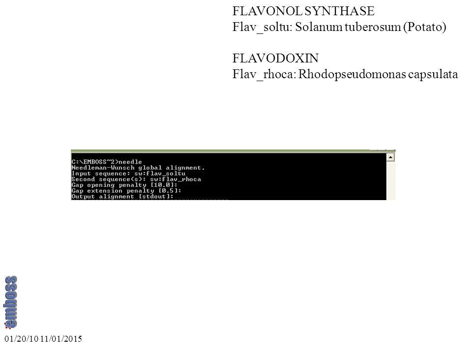 FLAVONOL SYNTHASE Flav_soltu: Solanum tuberosum (Potato) FLAVODOXIN Flav_rhoca: Rhodopseudomonas capsulata