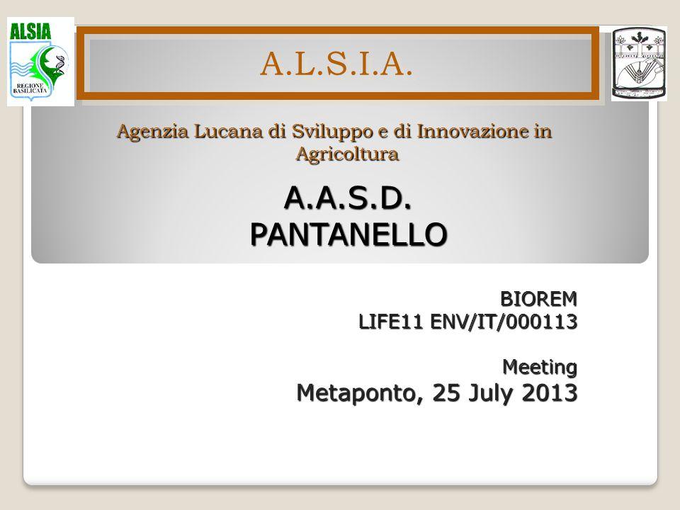 Agenzia Lucana di Sviluppo e di Innovazione in Agricoltura A.L.S.I.A. A.A.S.D.PANTANELLO BIOREM LIFE11 ENV/IT/000113 Meeting Metaponto, 25 July 2013