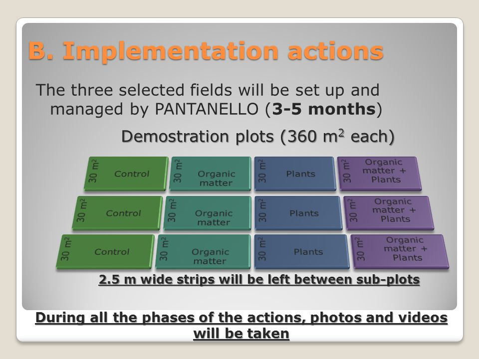B. Implementation actions The three selected fields will be set up and managed by PANTANELLO (3-5 months) Demostration plots (360 m 2 each) During all