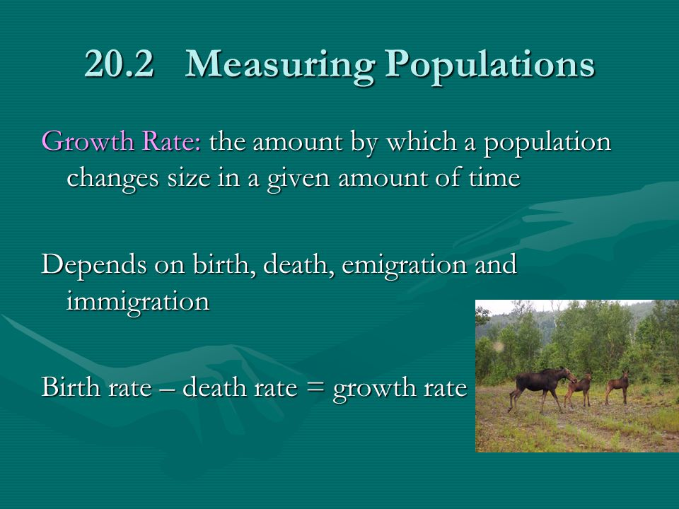 20.2 Measuring Populations Growth Rate: the amount by which a population changes size in a given amount of time Depends on birth, death, emigration an
