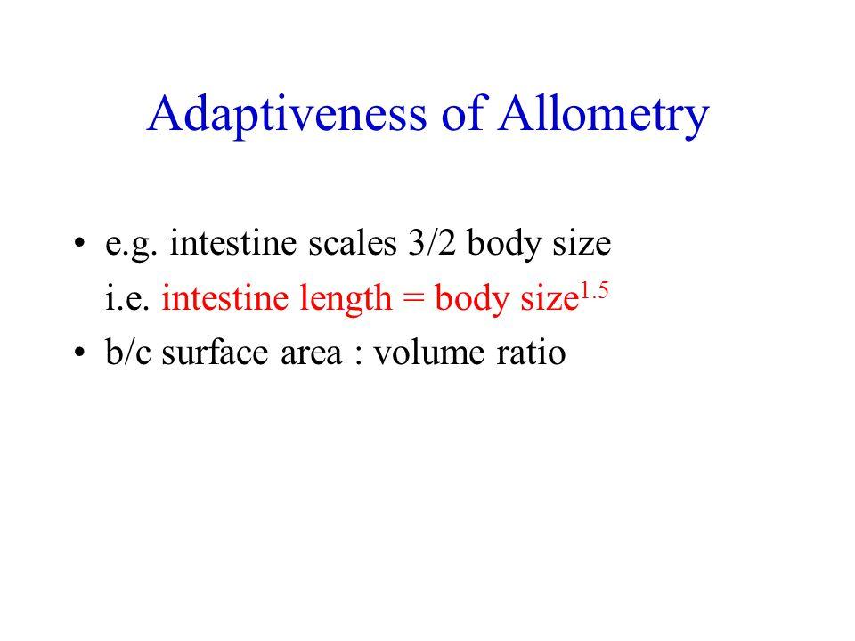 Adaptiveness of Allometry e.g. intestine scales 3/2 body size i.e. intestine length = body size 1.5 b/c surface area : volume ratio